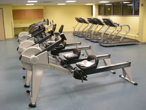 cycle and rowing machines and treadmills in small gym area